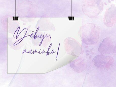 Den matek přání